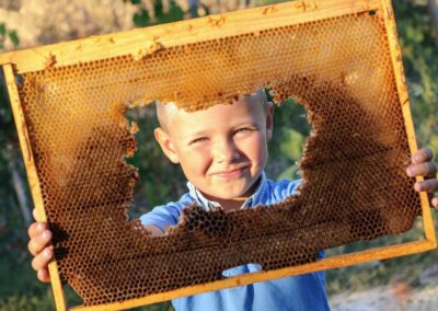 boy with honeycomb